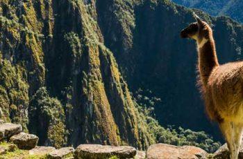 Sobre Machu Picchu
