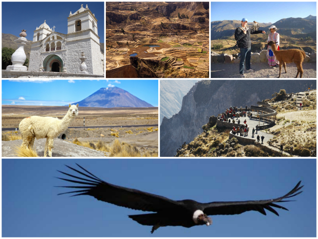 canion-colca-arequipa