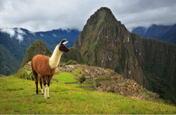 Pacote Lima e Cusco: por que escolher a Machu Picchu Brasil?