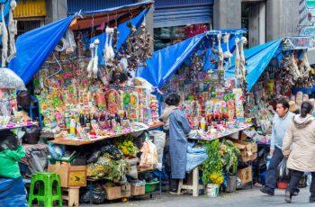 Mercado das bruxas: o que esperar desta visita mística