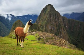 6 curiosidades sobre Machu Picchu que você não sabia
